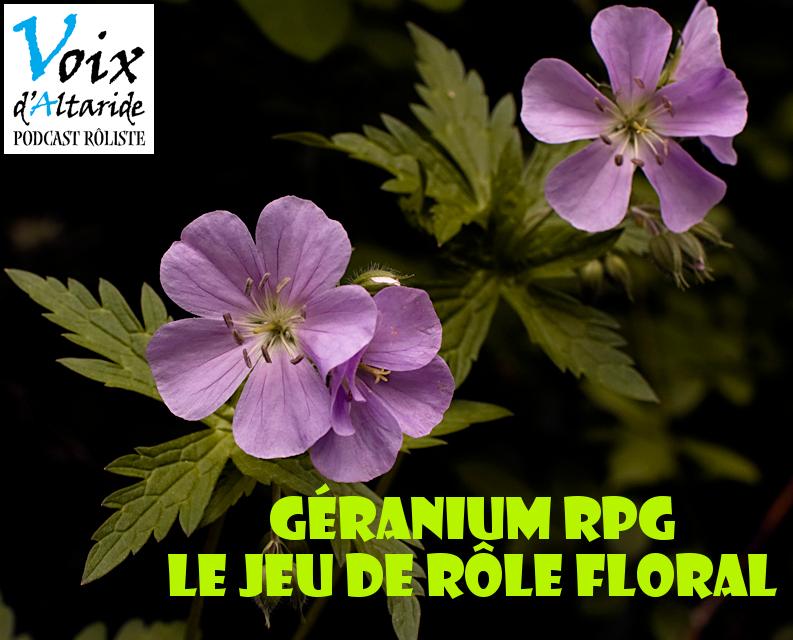 Xavier présente son jeu de rôle : Géranium RPG